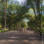 Central Park - Viali