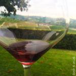 Degustazione vini da Ada Nada